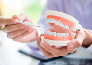 Dentists in Blackfalds   Dentists in Red Deer   Dentists in Lacombe